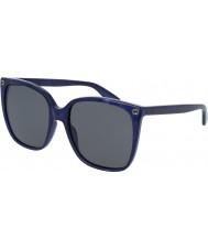Gucci レディースgg0022s 005サングラス