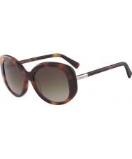 Longchamp Ladies lo601s 214 55サングラス