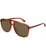 Gucci メンズgg0262s 002 58サングラス
