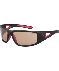 Cebe セッションマットブラック赤variochromのperfoサングラス