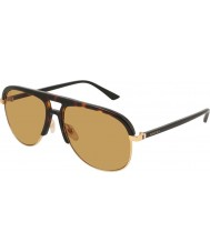 Gucci メンズgg0292s 004 60サングラス