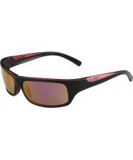 Bolle 熾烈な光沢のある黒は、偏光が金のサングラスをバラ