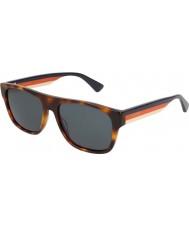 Gucci Mens gg0341s 004 56サングラス