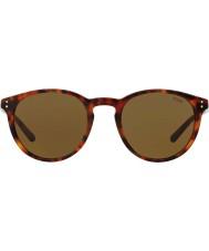 Polo Ralph Lauren メンズph4110 50 501773サングラス